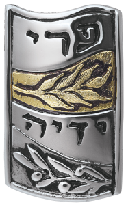 5777 Torah Fund Pin